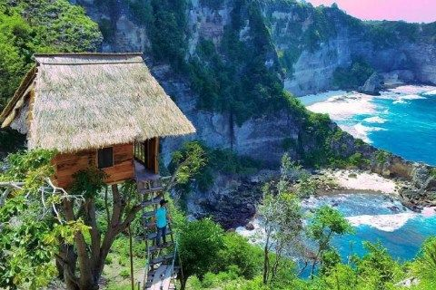 You can stay in a tree house in Bali overlooking stunning views for £30 a night