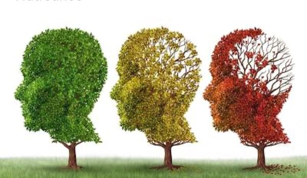 These herbs can reverse dementia study found