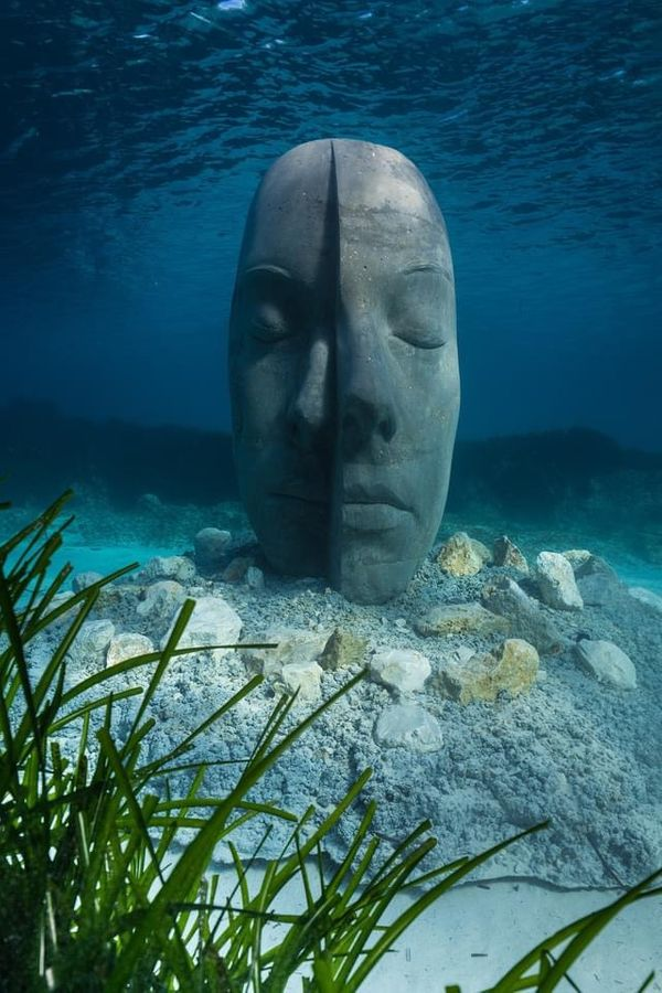 France: An  Eco-Museum  Immerses  Between  Two  Islands Near Cannes.